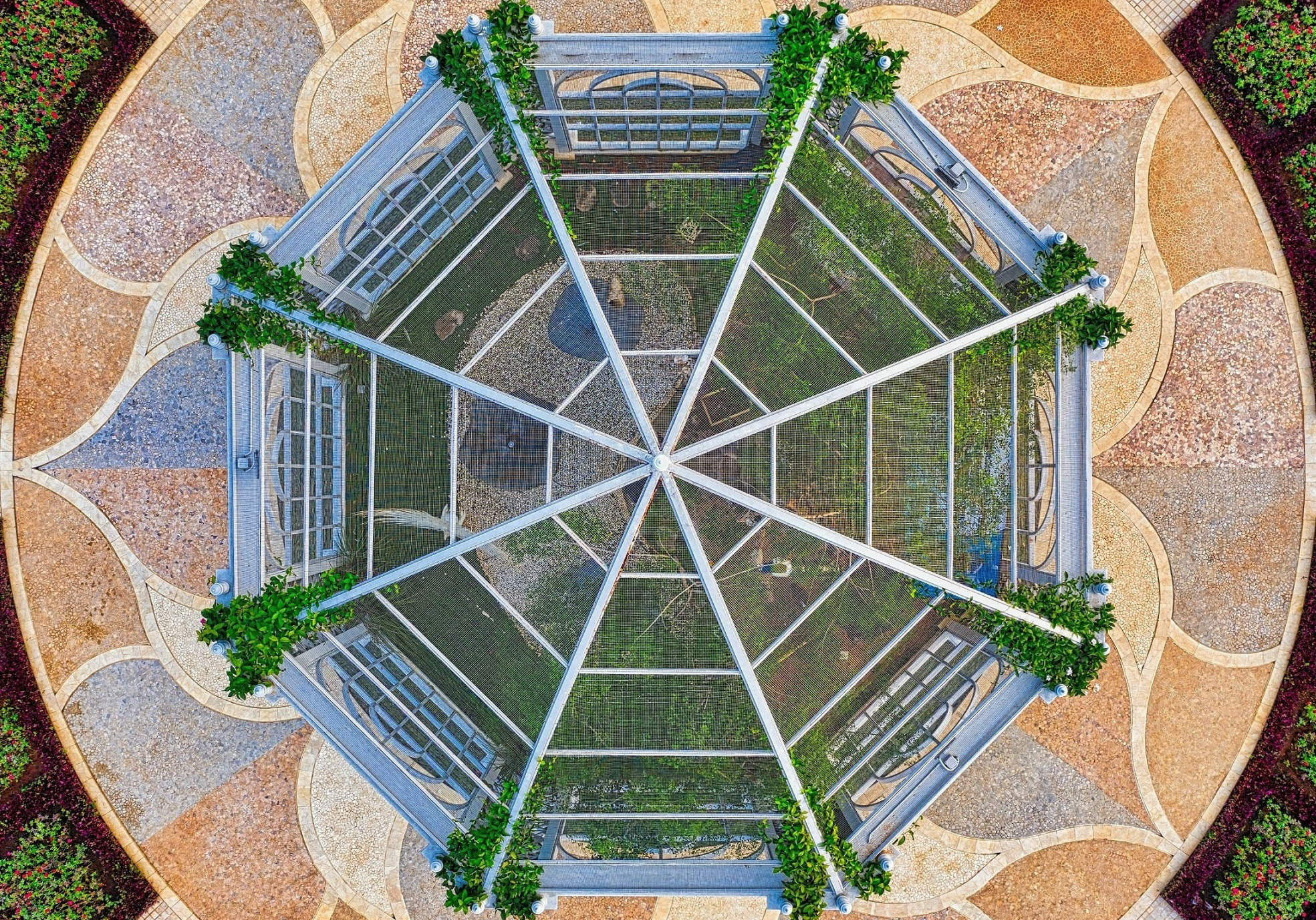 Greenhouse from above